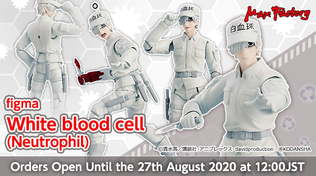 max_figma_White_blood_cell(Neutrophil)_en_644x358.jpg